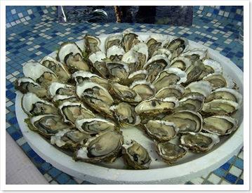 huîtres du Bélon
