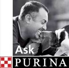 Ask_purina
